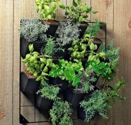 Verticle Wall Garden XL | Stratco USA